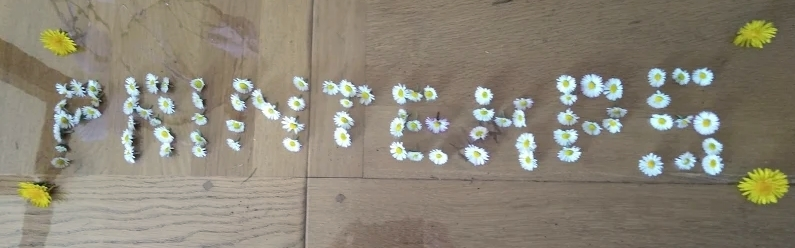 88-fleurs-de-printemps-Lilian